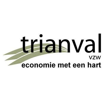 Logo Trianval vzw