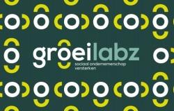 Groeilabz: Opleidingen voor managers binnen sociale ondernemingen